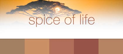 Spice Of Life Collection